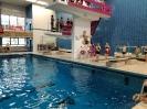 6er Schwimmen 2018_7