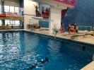 6er Schwimmen 2018_9