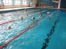 Schwimmfest Jg 6.März 2013